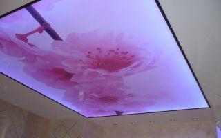 Натяжной потолок пвх или тканевый отзывы: что лучше, отличие пвх от тканевых, какие лучше