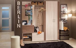 Стенка в прихожую: угловая в коридор, каталог и фото, 1 горка, мебель на видео, дизайн