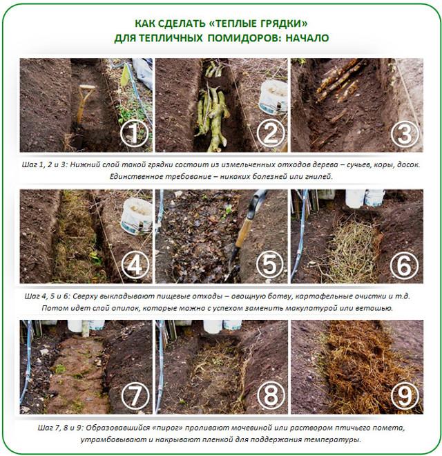 Обработка томатов теплице: как обрабатывать помидоры и подготовить почву к зиме, осенью перед посадкой земли