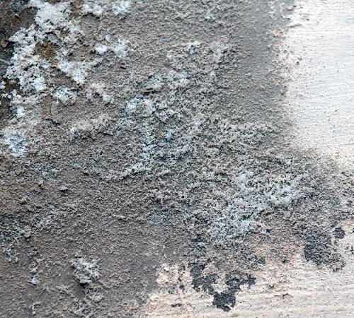 Грибок на потолке в ванной как избавиться: плесень и как с ней бороться в квартире, как убрать если покрылся, обработка в комнате и удаление медным купоросом