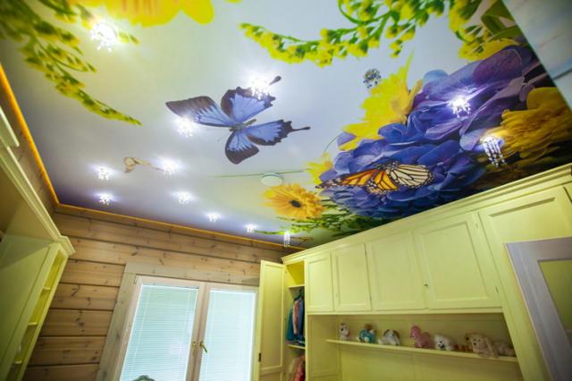 Натяжные потолки с фотопечатью: картинки и виды рисунков, отзывы, интерьер