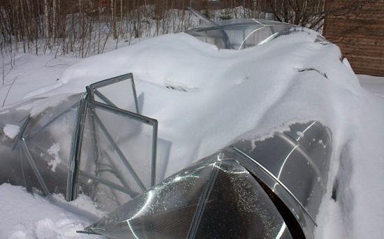 Теплица из поликарбоната усиленная: дачные каркасы, прочные производители, как укрепить на зиму сверхпрочный