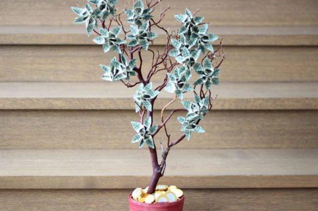 Денежный топиарий: своими руками, пошаговое фото, деревья мастер-класс, как сделать бумажный, инструкция и МК