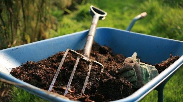 Выращивание огурцов в теплице из поликарбоната: уход и посадка, сорта лучшие подвязать, как вырастить и полив