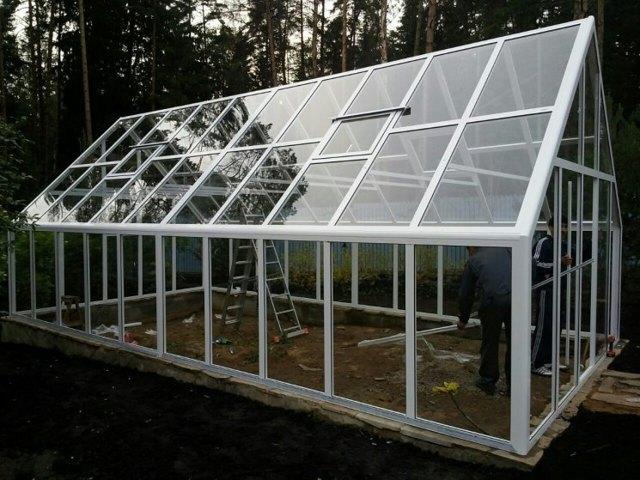 Современные теплицы: поликарбонат, фото дачи, выращивание зимой, вид парников, зимняя, технология бизнеса