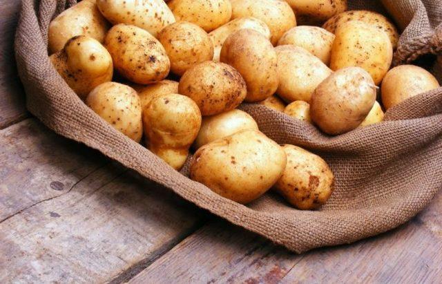 Как хранить картошку в погребе: советы хранения картофеля, его сохранения зимой, закладка клубней