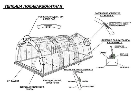 Китайские теплицы: фото парников, Россия, видео, пленка и чертеж, конструкция своими руками, термоцилиндр из Китая