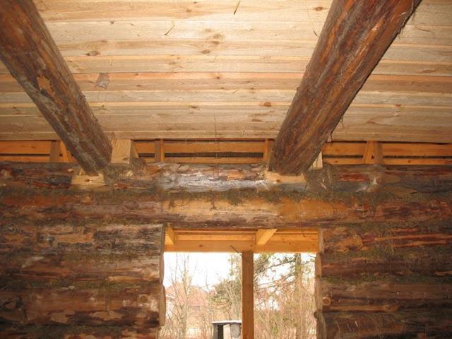 Массивная доска шарнирно подвешена к потолку: как подшить обрезной в доме, шпунтованная и потолочная, фото необрезной, своими руками