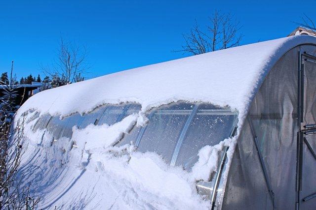 Уход за теплицей: как ухаживать за поликарбонатом, правильный зимой грунт, должное видео с парником и землей