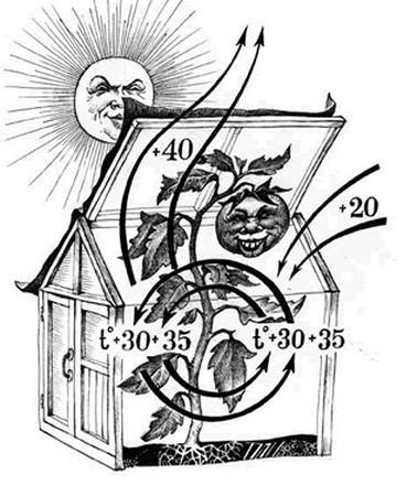 Умная теплица: Ардуино своими руками, Курдюмова и Малышевского, блок управления парником, видео и проекты