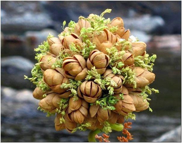 Топиарий из цветов: своими руками, пошагово из живых ромашек, как сделать из бумажных и тканых сухоцветов