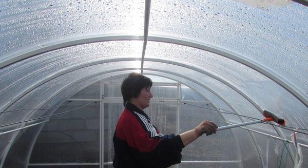 Зимняя теплица: своими руками подготовка к зиме, как сделать и оставлять парник, построить и держать, фото и видео