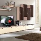 Шкаф в гостиную: навесной и модульный, фото дизайна комнаты, белый платяной с дверью, подвесные комбинации