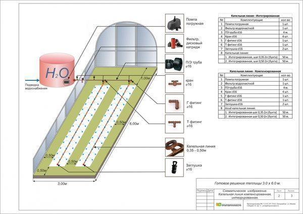 Теплица 3 м на 6 м: сборка поликарбоната и видео 3х6, чертеж и как собрать парник, планировка метров и что посадить