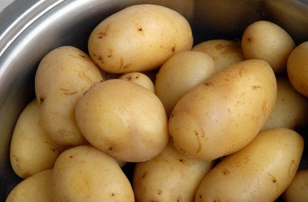 Сорт картофеля Голубизна, описание, фото, характеристика и отзывы, а также особенности выращивания
