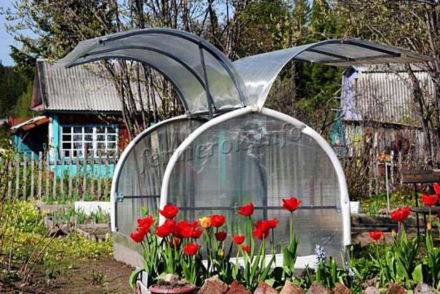 Парник бабочка отзывы ужасный: удобная теплица из поликарбоната 4 м, видео и размеры, чертежи своими руками