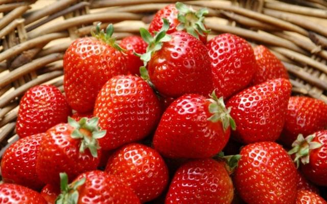 Клубника в теплице круглый год как бизнес: выращивание, план, видео урожая, рентабельность, на продажу