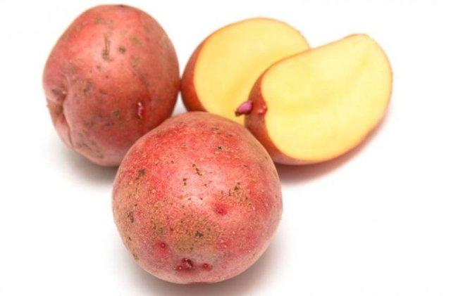 Сорт картофеля Красавчик, описание, фото, характеристика и отзывы, а также особенности выращивания