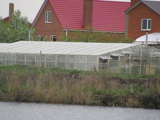 Подготовка теплицы к новому сезону весной: посадка зелени, работа и видео, поликарбонат для почвы, что посадить