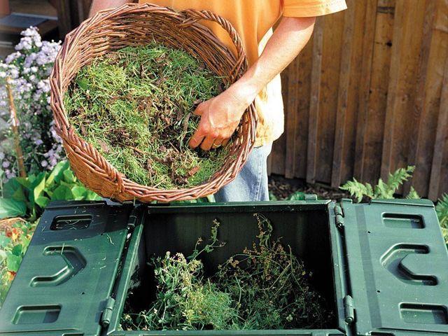 Как сделать компост своими руками: пошаговая инструкция для начинающих