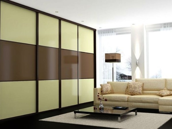 Шкаф в зал: фото в квартире, дизайн книжного в гостиной, во всю стену интерьер, виды универсальных блоков