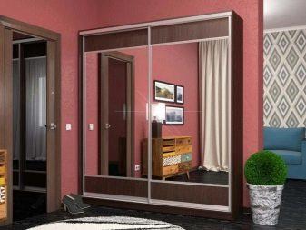 Шкаф-купе с зеркалом в прихожую: фото зеркального и углового в коридоре, модное пескоструйное, высота 250 см, со шкафчиком и двухдверный