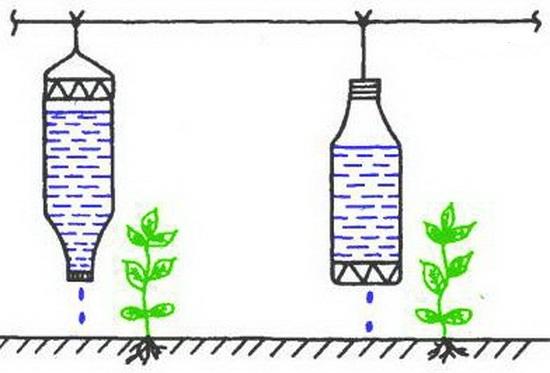 Полив в теплице из пластиковых бутылок: капельный бутылками, руками, видео в помощь, бутылочный самодельный