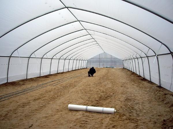 Теплица Фермер: видео и сборка, ширина парника, профессиональная от производителя