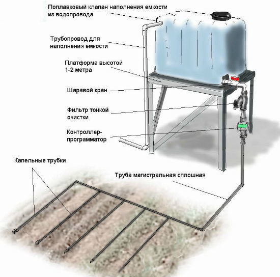 Система полива для теплицы: своими руками растения, поливочное лучшее орошение, как сделать парник и управление