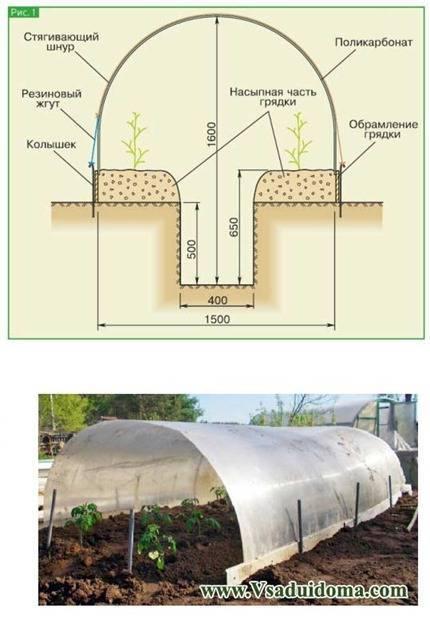 Виды теплиц: вертикальный парник ракушка, своими руками фото, какие бывают образцы, тоннель прямоугольный