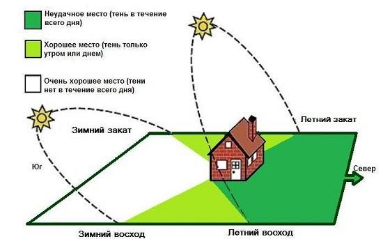 Установка теплицы по сторонам света: как правильно ставить, относительное расположение на участке парника