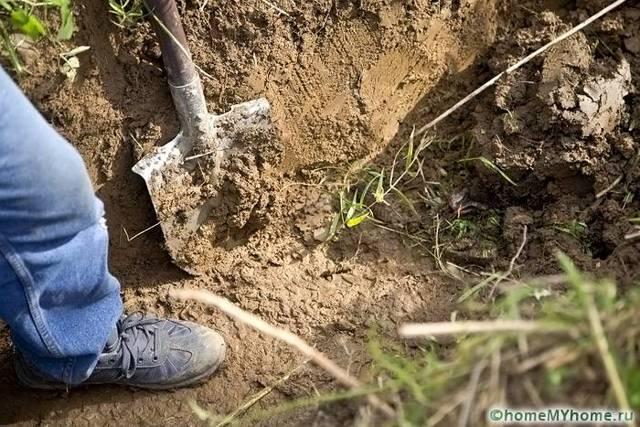 Дренаж участка: с высоким уровнем грунтовых вод, устройство, своими руками, система, сделать осушение трубы правильно, слив