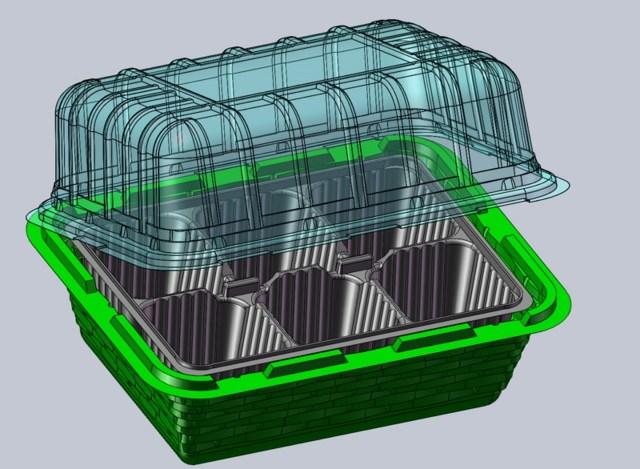 Как вырастить киви из семян в домашних условиях, инструкции по выращиванию из косточки + фото
