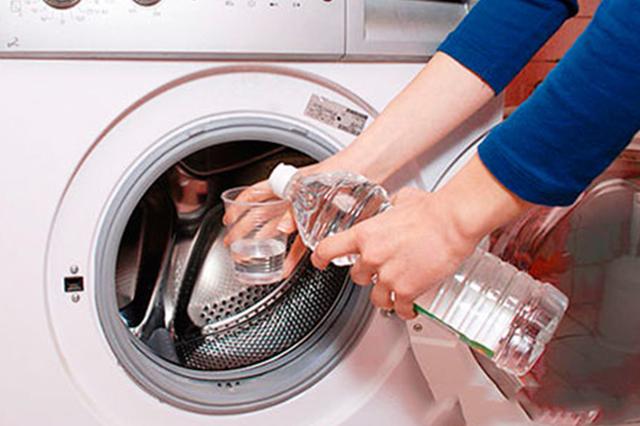 Как избавиться от запаха плесени в квартире: на вещах, в шкафу, стиральной машине, в автомобиле