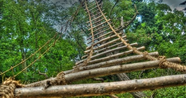 Веревочная лестница своими руками: как сделать для колодца, канатная и деревянная, детскую как изготовить