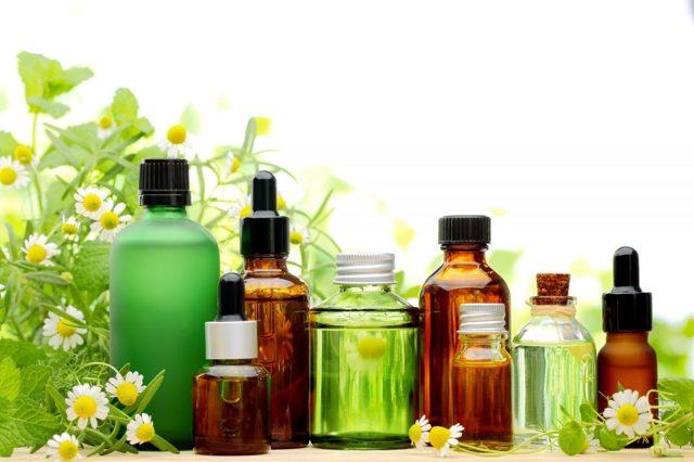 Народные средства от моли в квартире: эфирные масла, лаванда и прочее