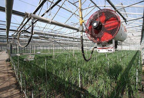 Обогреватели для теплицы из поликарбоната: обогрев своими руками, видео и отопление зимой, как обогреть весной