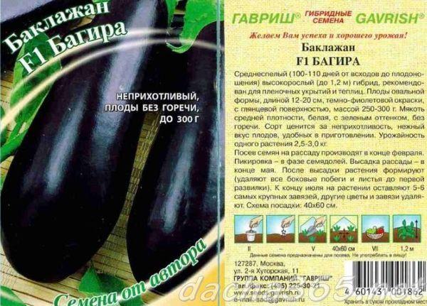 Сорта баклажанов для теплицы из поликарбоната: лучшие в Подмосковье, высокорослые, какие сажать