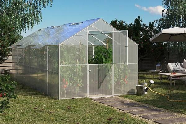 Теплица Ботаник: отзывы производителей, парник Премиум для фермеров