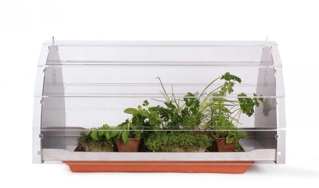 Домашняя теплица: парник для рассады в квартире, своими руками растения и фото круглый год, цветов виды