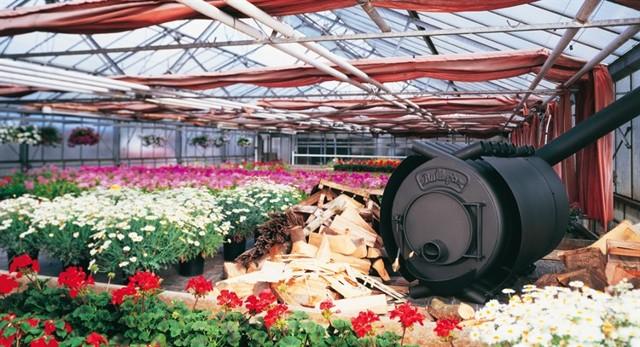 Отопление теплицы: системы для дома, воздух отопить дровами, проекты неотапливаемые, выращиваем рассаду