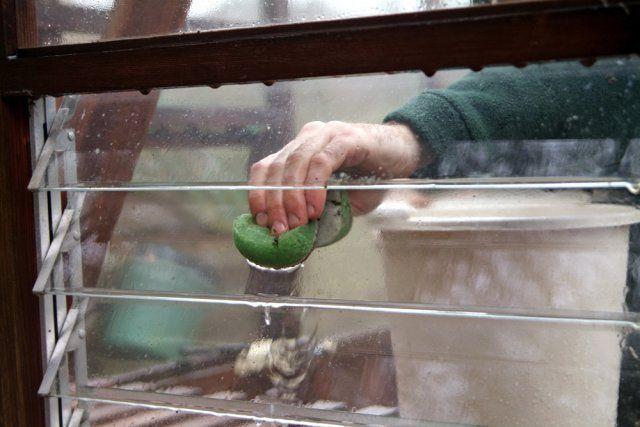 Теплица Дачник отзывы: сборка уникального парника Счастье дачника, подготовка к зиме, советы дачников, разборный каркас