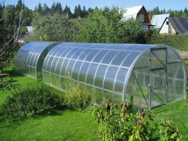 Укрывной материал для парников: чем накрыть теплицу, как покрыть лучше, укрытие из поликарбоната и фото