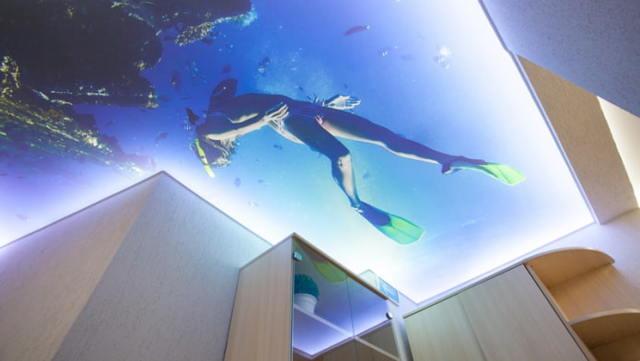 Рисунки 3д на потолке: фото перфорации, каталог панелей для квартиры, как сделать своими руками