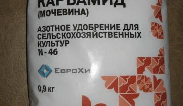 Как подготовить теплицу из поликарбоната к зиме: зимнюю открывать в Казахстане своими руками, толщина поликарбоната
