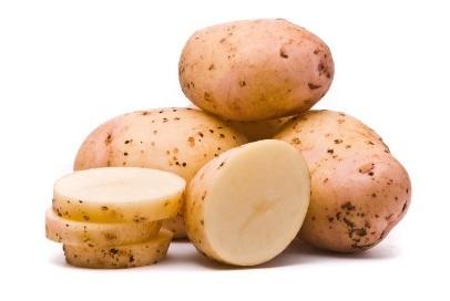 Сорт картофеля Импала, описание, характеристика и отзывы, а также особенности выращивания