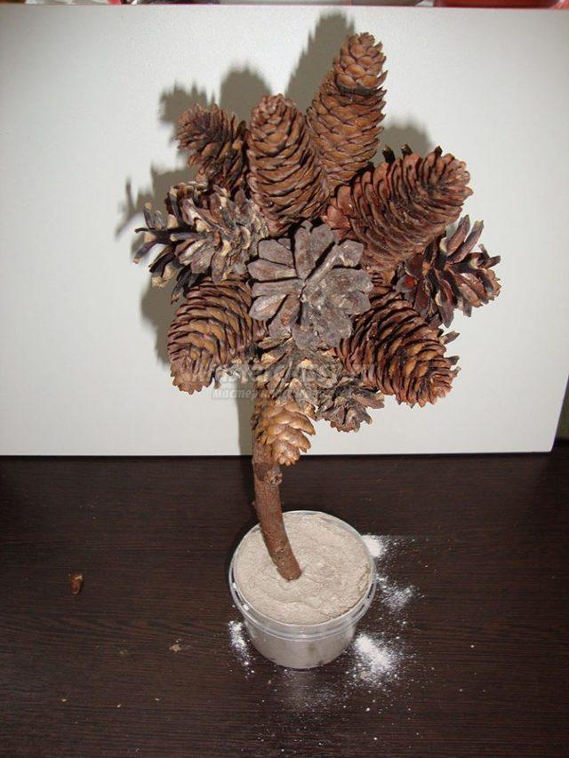 Топиарий из шишки: фото мастер класс, из листьев пошагово, своими руками как сделать осенний, из желудей еловых, мк из сосны