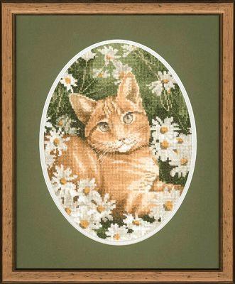 Вышивка крестом кошки схемы: котики бесплатно, черно-белые и рыжие на крыше, скачать наборы, британский