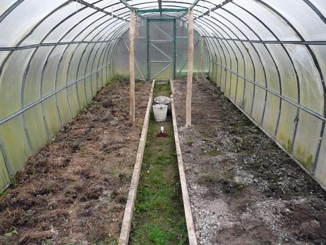 Обработка теплицы весной от болезней и вредителей: посадка из поликарбоната, чем обработать землю и почву